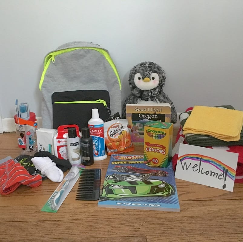 Picture of the contents of a Kid Butterfly Box.